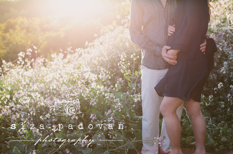 Maternity Photography Session - San Francisco, California